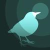 BIRD RADAR