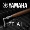 Piano Tuning Application PT-A1