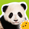 Zoo Animals ~ Touch, Look, Listen