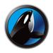 鲸鱼-稳健收益投资理财平台
