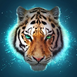 The Tiger Online RPG Simulator