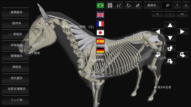 3D Horse Anatomy Software on the App Store