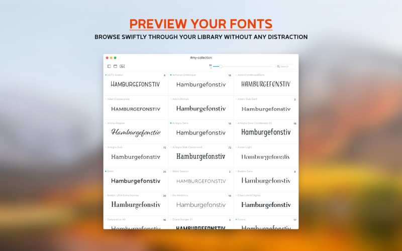 1_Typeface_2.jpg