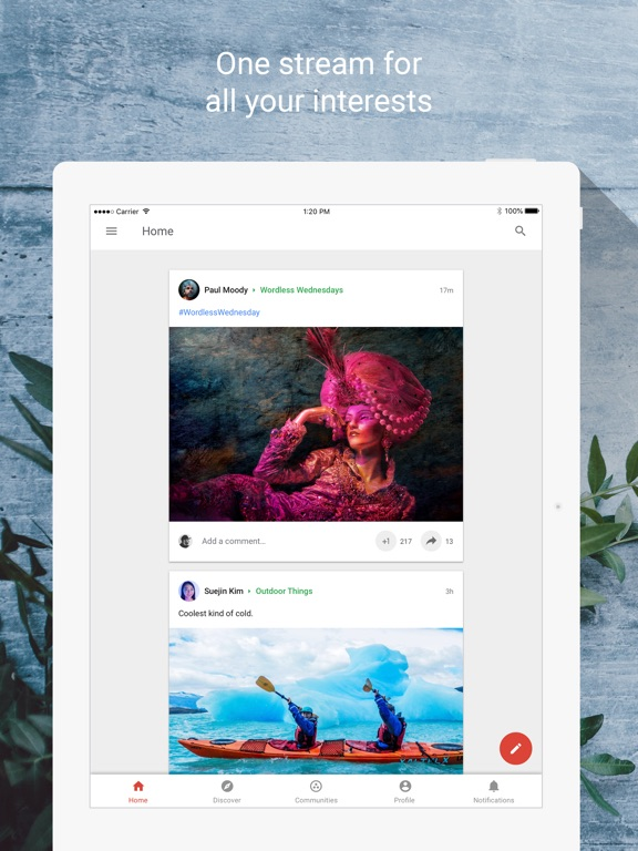 Google+ Screenshots