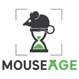 MouseAge