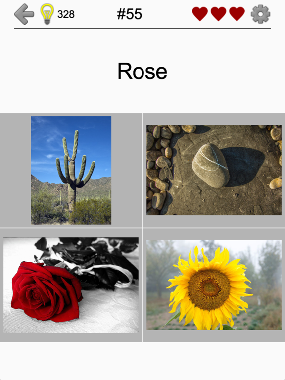 Easy Pictures - Fun Photo-Quiz screenshot 10
