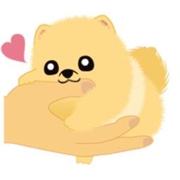 Pomeranian Small Dog Sticker