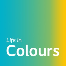 Life in Colours