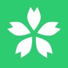 Kanako icon
