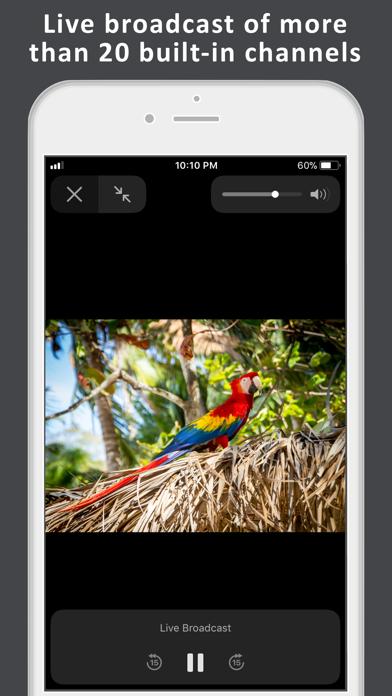 TV de Costa Rica: Tico live TV Screenshot on iOS