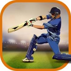 Activities of CricAstics 3D Cricket Game
