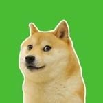 Meme sticker pack for WhatsApp