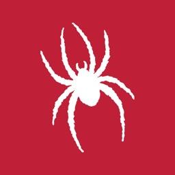 Richmond Spiders Gameday
