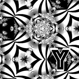 Ornament in Black&White Colors