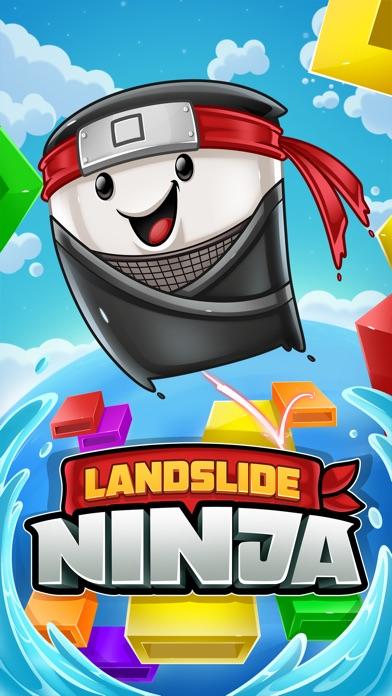 Landslide Ninja screenshot 1