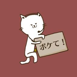 Cat's AD