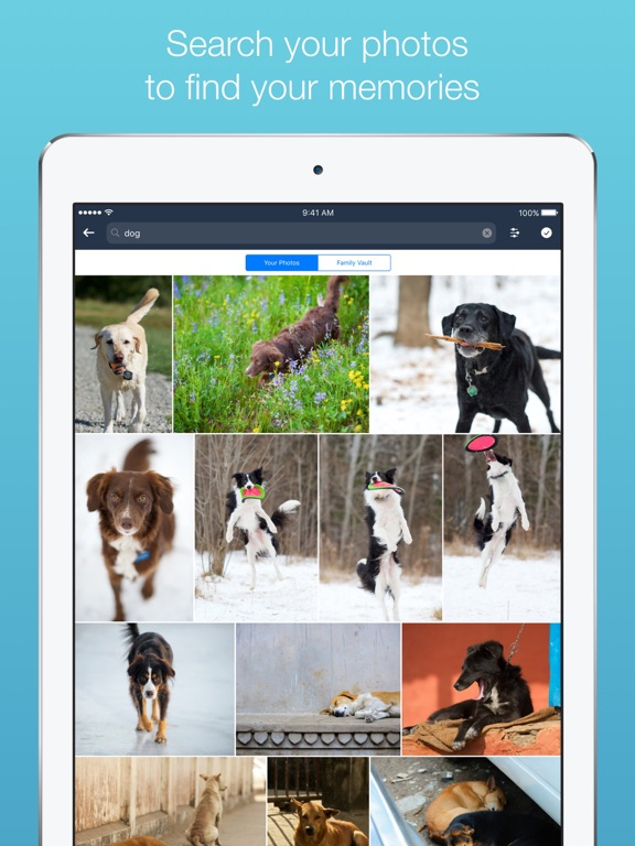 Amazon Photos – Amazon Photo Storage and Backup screenshot