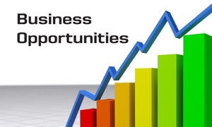 Business Opportunities Channel