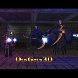 Old Gold 3D - Action RPG