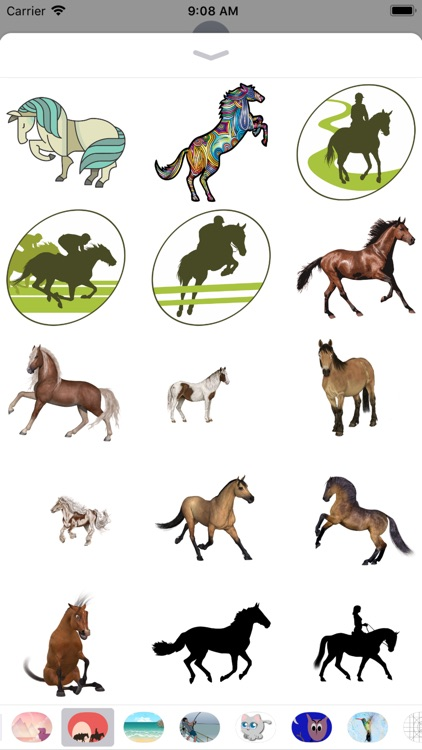 Horse Stickers - 2018
