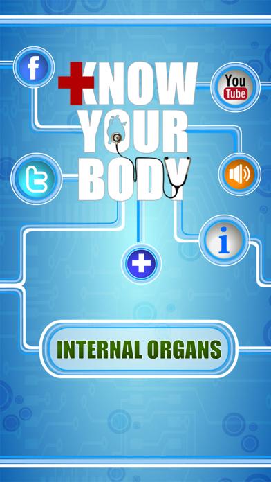 Human Body - Internal Organs