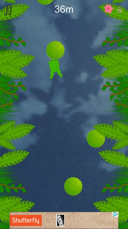Lily Pad Leaps screenshot-5