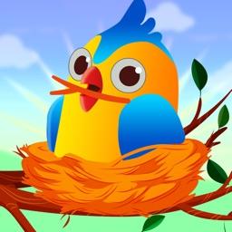 Build Nest: Help Homeless Bird