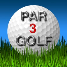 Activities of Par 3 Golf