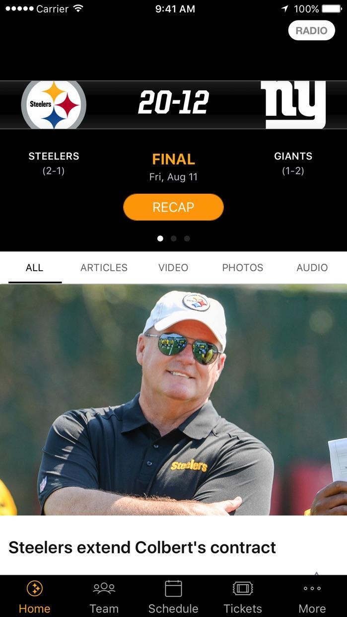 Pittsburgh Steelers Screenshot