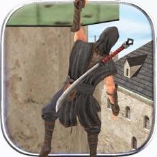 Activities of Ninja Samurai Assassin Hero II
