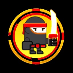 Fun Ninja Adventure