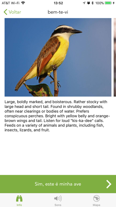 Baixar Merlin Bird ID por Cornell Lab para Android
