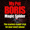 Magic Spider - My Pet...
