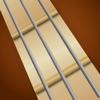 Dulcimer Chords - iPhoneアプリ