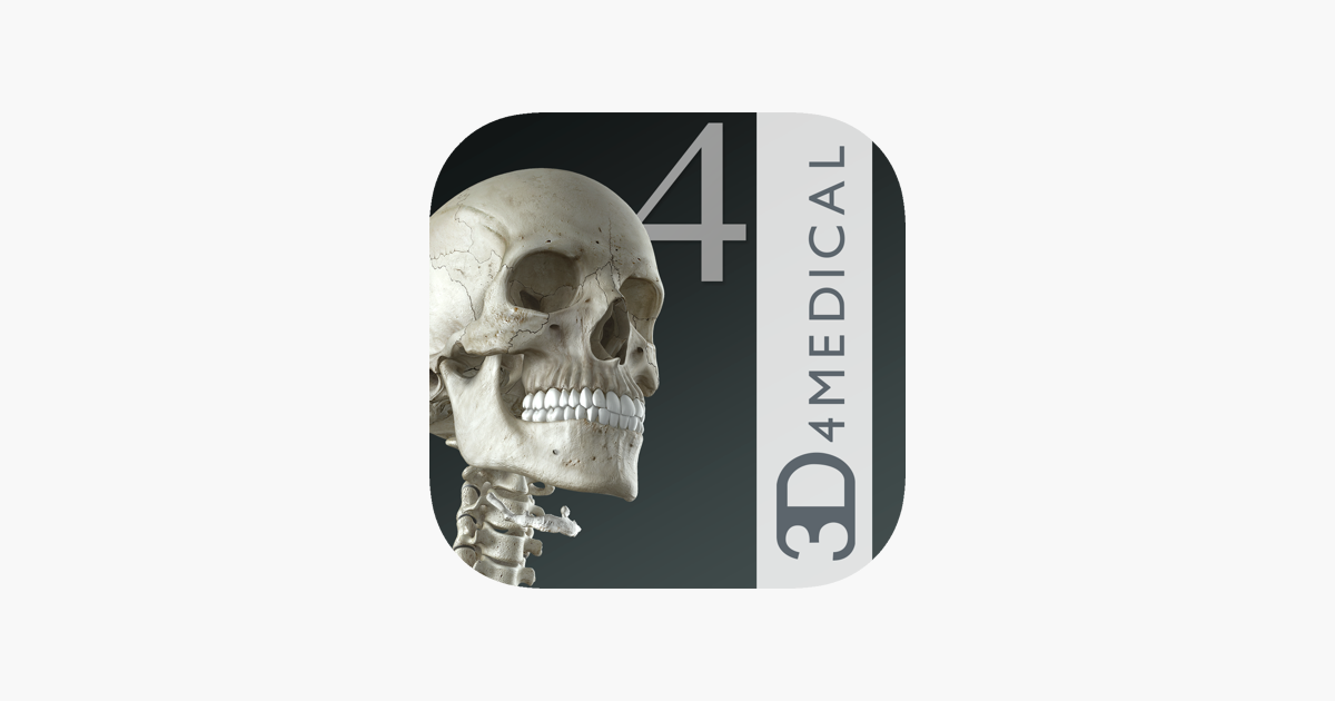 essential skeleton 4 on the app store