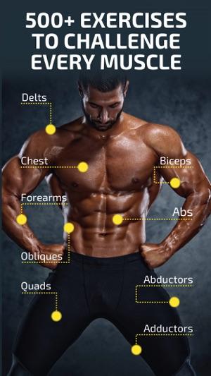 Elegant Gym Fitness Images