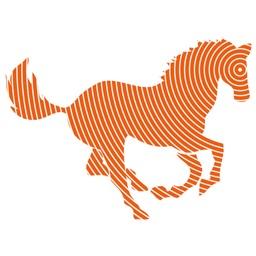 Laser Therapie in Horses
