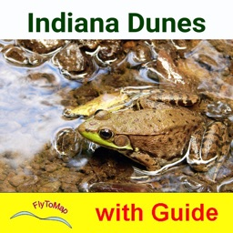 Indiana Dunes National Park - Standard