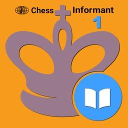 Encyclopedia 1 by Informant