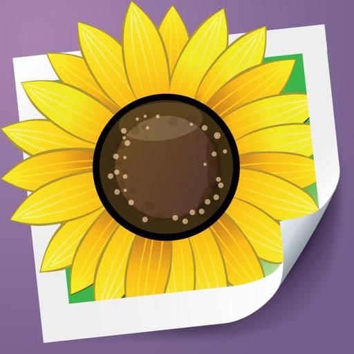 Photo Adjust - brighten & improve dim image application logo