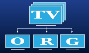 TV Org: watch iptv channels online + EPG programs