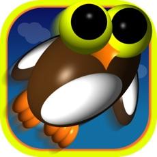 Activities of Tornado Owlie