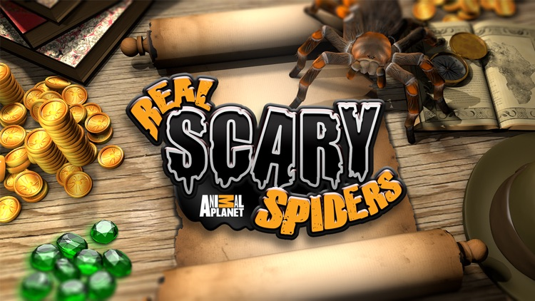 Real Scary Spiders screenshot-0