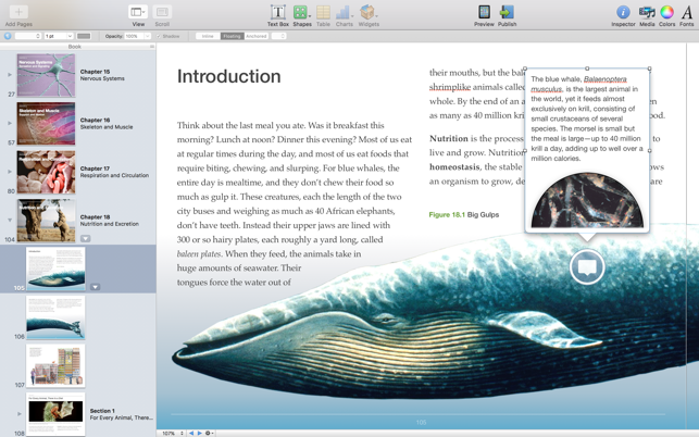 ‎iBooks Author Screenshot