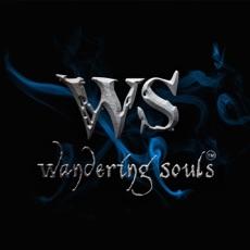 Activities of Wandering Souls
