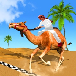 Desert King Camel Race