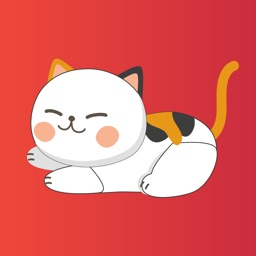 Cat Puns for Texting & Chat IM