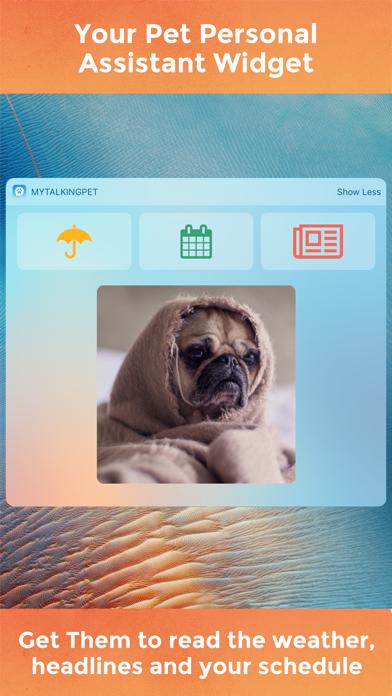 おしゃべりペット screenshot1