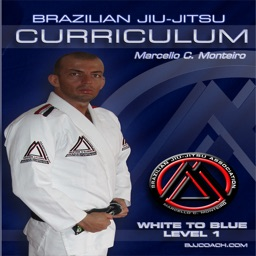 BJJ White to Blue Level 1 Step-By-Step Curriculum