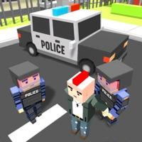 Codes for Blocky US Criminal Transport Hack